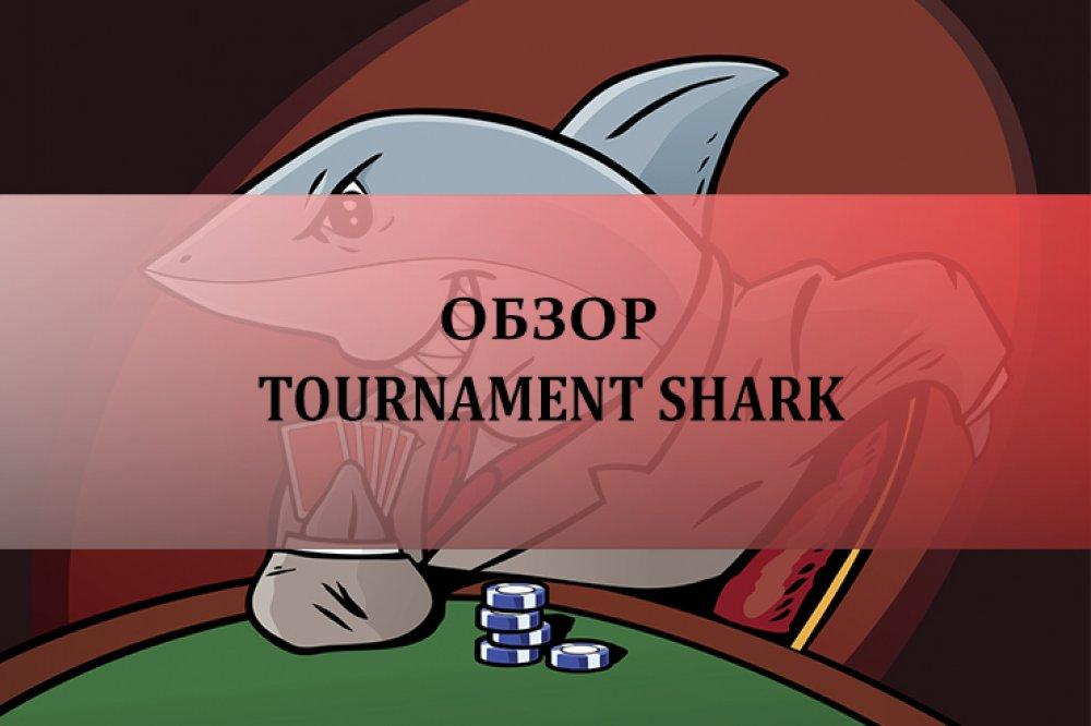 Tournament Shark