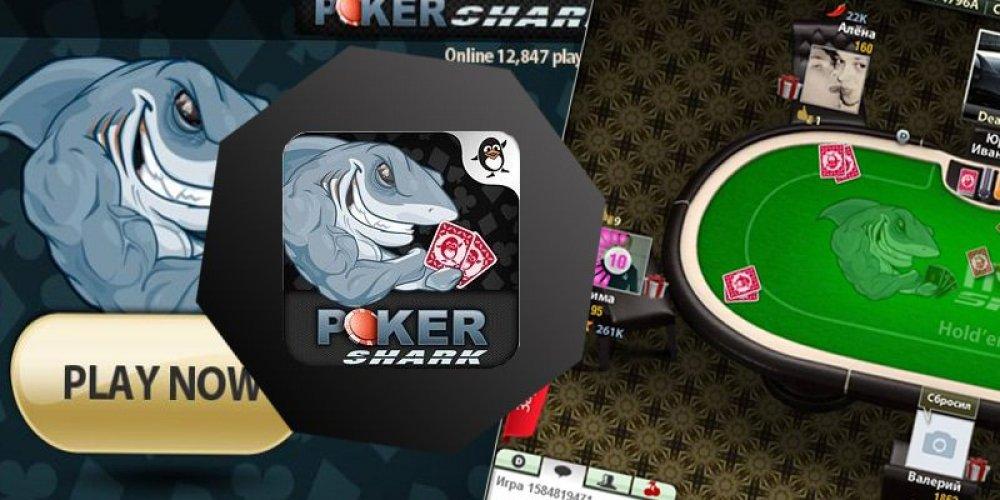 Покер Шарк